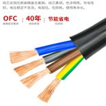 NH-RVSP-9*0.5耐火屏障电缆价钱
