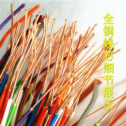 DJYP3VP3计算机屏蔽电缆