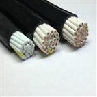 控制电缆KVVP-2×1.0