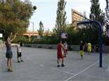 篮球-万荔生态园休闲项目