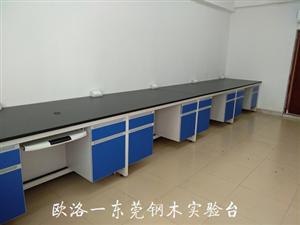 东莞钢木实验台
