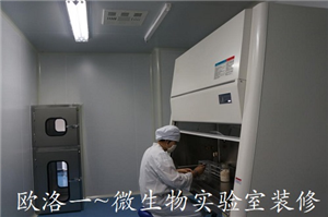 微生物实验室装修