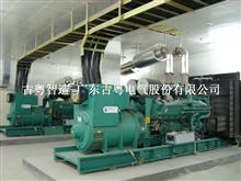 鹤山市柴油发电机安装有限公司