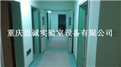 重庆实验室家具,重庆实验室洁净工程
