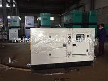 广州发电机厂家,从化发电机组,柴油发电机