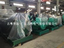 广州康明斯发电机生产厂家有限公司