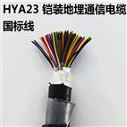 阻燃铠装计算机电缆ZRC-DJYPV22