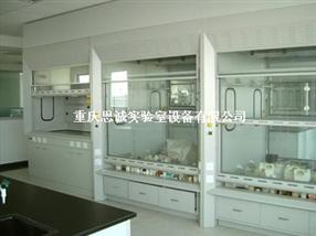 重庆通风柜,合川实验室洁净工程,南川落地式通风柜