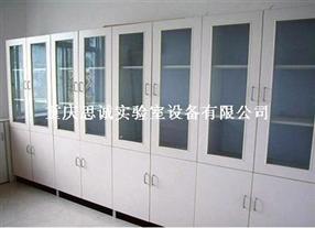 贵阳试剂柜-重庆器皿柜