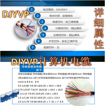 KVVP22 钢带铠装屏蔽控制电缆