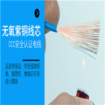MHYVP4*2*0.5屏蔽电话电缆