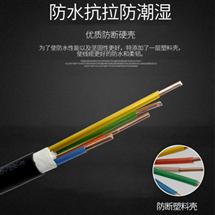 DJYP2V计算机电缆2×2×1.5