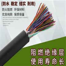 计算机电缆ZR-DJYVP电缆价格