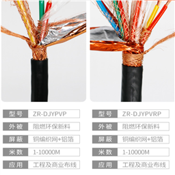 100*2*0.5 ZR-HYA53铠装阻燃通信电缆