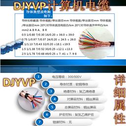 阻燃铠装计算机电缆ZR-DJYPVRP22