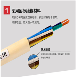 5*2*1.0阻燃计算机电缆ZR-DJYVP DJYVP