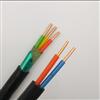 DJYPVPR-2×2×1.5㎜²DJYPVPR-计算机软电缆