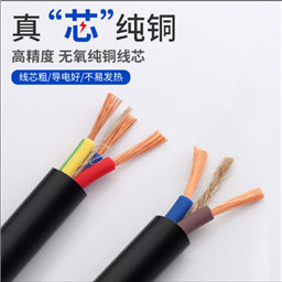 DJYP2VP2R-8×2×1.0㎜²绝缘电子计算机电缆