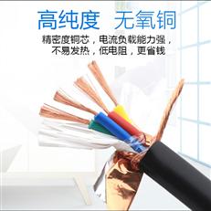 300/500V计算机电缆2×3×1.5 DJYPVP屏蔽电缆