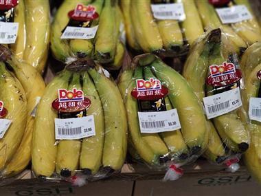 香蕉进口通关注意事项