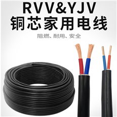 DJYPVPR计算机电缆(图)