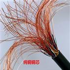 IA-DJYPV屏蔽型本安型计算机信号电缆