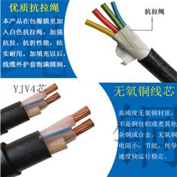 铜带计算机电缆DJYVP2