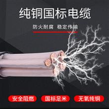 多芯实芯同轴电缆SYV75-2-1×8 75-2-1×4