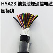 HYAT30x2x0.4. HYAT 30*2*0.5充油通信电缆