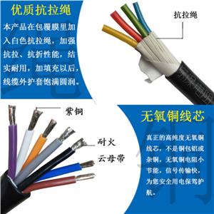 RS-485*-RS-485通信电缆