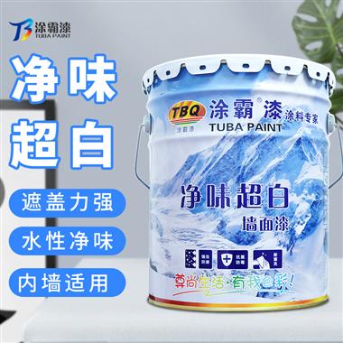 凈味環保墻面漆TB-1000 凈味超白乳膠漆工程