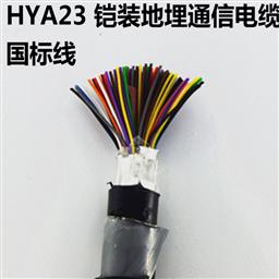 HYAT22钢带铠装通信电缆