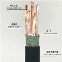 阻燃计算机电缆ZR-DJYVRP 5*2*1.5