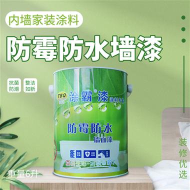 环保防霉墙面乳胶漆
