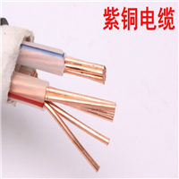 DJYP3V22-24×2×0.5㎜²DJYP3V22对绞计算机电缆
