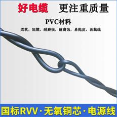屏蔽控制电缆KVVP22 2*4