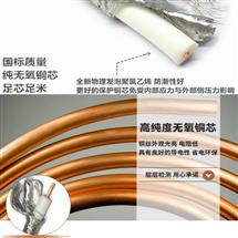 DJYJP2V 铜带分对计算机电缆