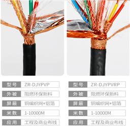 计算机电缆DJYPVP-1x2x1.0