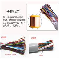WDZ-HYA 阻燃通信电缆