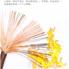 阻燃计算机电缆ZR-DJYPVP 6*2*2.5厂家价格
