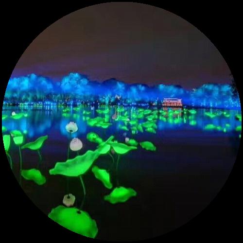 荷叶池夜景灯光配置