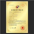 Certificate of Patent