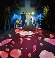 沉浸式婚礼