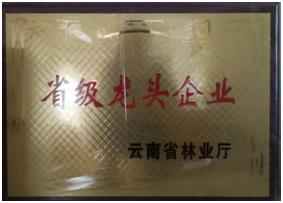 荣获云南省林业龙头企业