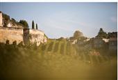 圣埃美隆身价最高的葡萄酒是哪些? List of Saint-Emilion's 10 Most Expensive Wines