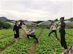 深圳农家乐一日游蔬菜采摘